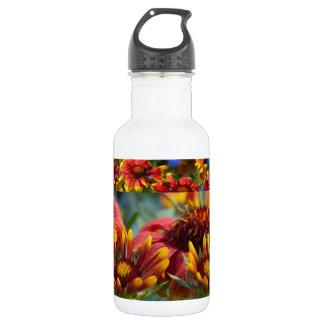 Exhibición floral exótica colorida: Bendiciones de