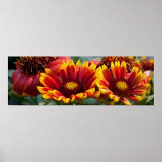 """"""" exhibición floral FRESCA 36x12: Energía positiva Poster"""