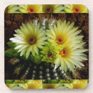 Exhibición floral FRESCA de los CACTUS del CACTUS  Posavasos De Bebida