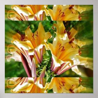 Exhibición floral FRESCA: Energía positiva amarill Posters