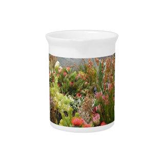 Exhibición floral surafricana de wildflowers jarrones