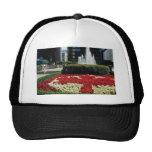 Exhibición roja y blanca roja de la hoja de arce,  gorras