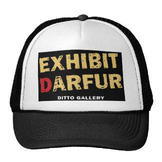 Exhibit Darfur Hat