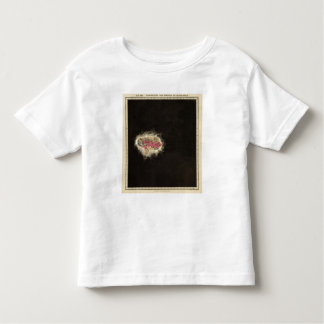 Exhibiting The Empire of Alexander 323 BC Toddler T-shirt