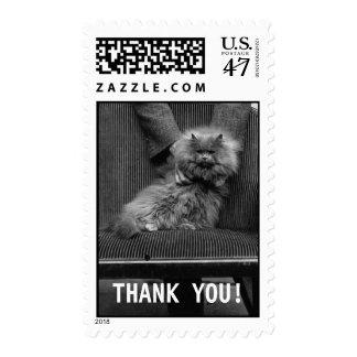Exhibition Cat Club - Mondial 493   Thank You Postage