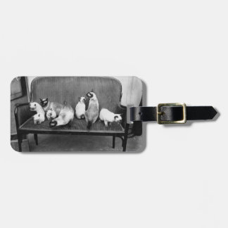 Exhibition Cat Club - Mondial 494 Luggage Tag