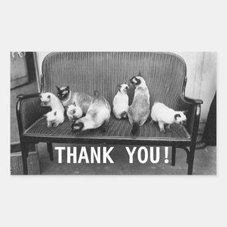 Exhibition Cat Club - Mondial 494 | Thank you Rectangular Sticker