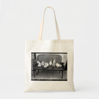 Exhibition Cat Club - Mondial 494 Tote Bag
