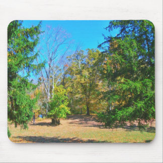 Exhilarating Autumn Afternoon Mouse Pad