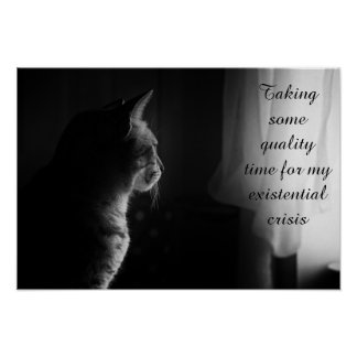 Existential Crisis Poster