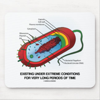 Existing Under Extreme Conditions Very Long Time Mouse Pad