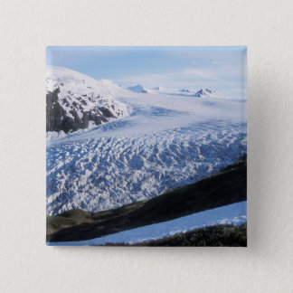 Exit Glacier in Kenai Fjords National Park, Button
