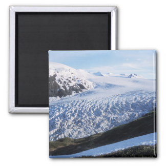 Exit Glacier in Kenai Fjords National Park, Magnet