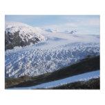 Exit Glacier in Kenai Fjords National Park Panel Wall Art