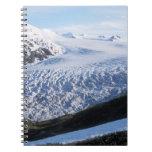 Exit Glacier in Kenai Fjords National Park, Spiral Notebook