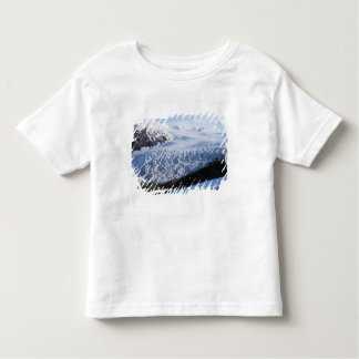 Exit Glacier in Kenai Fjords National Park, Toddler T-shirt
