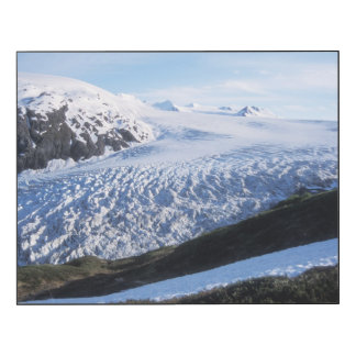 Exit Glacier in Kenai Fjords National Park Wood Print