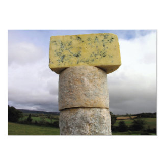 Exmoor Blue Cheese, Lydeard St Lawrence, Somerset Card