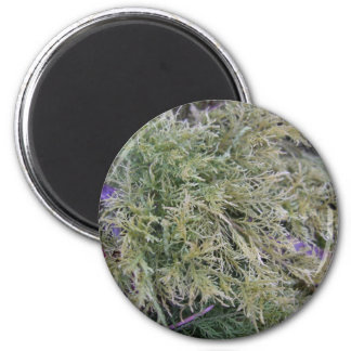 Exmoor plant and purple stems 1 2 inch round magnet