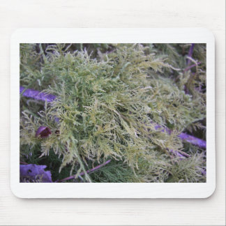 Exmoor plant and purple stems 1 mousemats