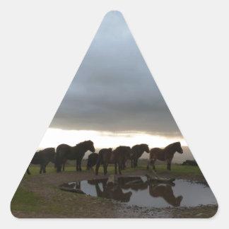 Exmoor Ponies Triangle Sticker