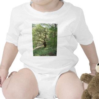 Exmoor tree 1 baby bodysuits