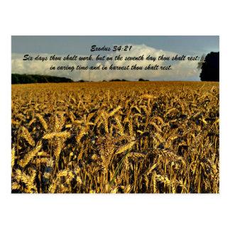 Exodus 34:21 Six days thou shalt work, but on the Postcards