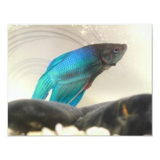 Exotic Betta Fish Closeup 4.25x5.5 Paper Invitation Card