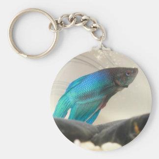 Exotic Betta Fish Closeup Keychain
