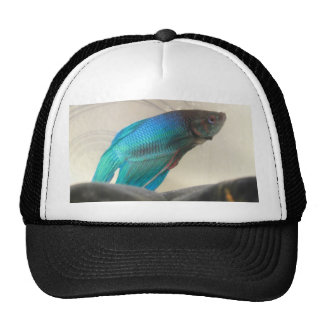 Exotic Betta Fish Closeup Trucker Hat