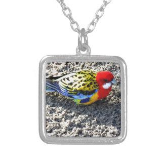 Exotic Bird Pendants