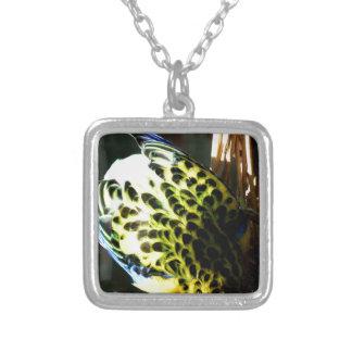 Exotic Bird Jewelry