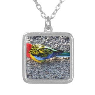 Exotic Bird Necklace