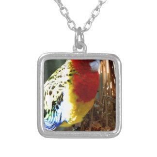 Exotic Bird Necklaces