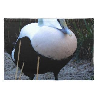 Exotic Bird Place Mats