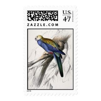 Exotic Bird Postage Stamp