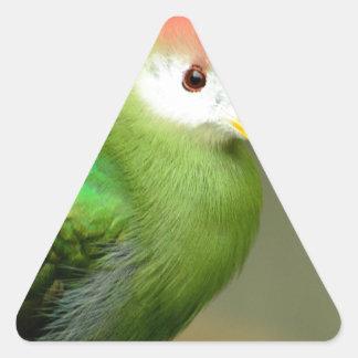 Exotic Bird Stickers