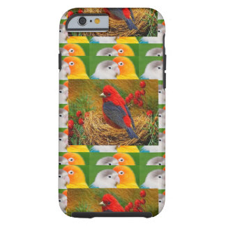 Exotic Birds Kids Mom Sister Zoo Fancy Pets Tough iPhone 6 Case