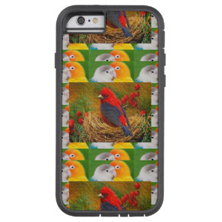 Exotic Birds Kids Mom Sister Zoo Fancy Pets Tough Xtreme iPhone 6 Case