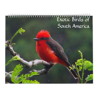 Exotic Birds of South America Calendar