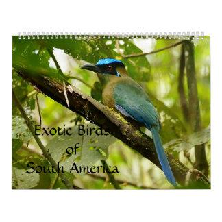 Exotic Birds of South America Calendar 2014