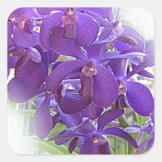 EXOTIC BLUE ORCHIDS SQUARE STICKER
