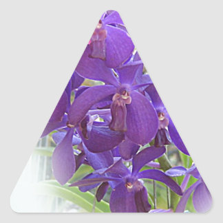 EXOTIC BLUE ORCHIDS TRIANGLE STICKER