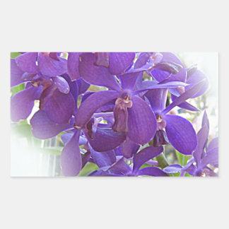 EXOTIC BLUE ORCHIDS RECTANGULAR STICKER
