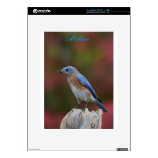 Exotic Bluebird iPad Skin