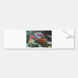 exotic butterfly car bumper sticker