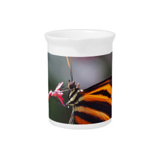 exotic butterfly drink pitchers