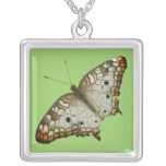 Exotic Butterfly Tropical Nature Photography Silver Plated Necklace