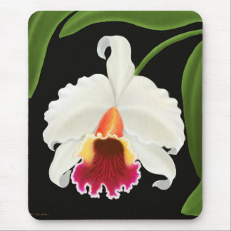 Exotic Cattleya Orchid Flower Mouse Pads