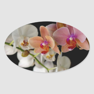 EXOTIC COLORFUL ORCHIDS OVAL STICKER